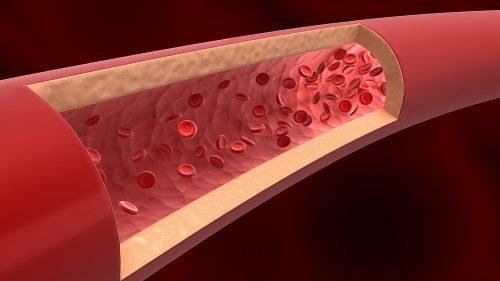 پرینت سه بعدی ساختار زیستی رگ ها