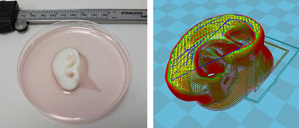 مهندسان 3D Print Celleron برای تکثیر بافتهای پیچیده